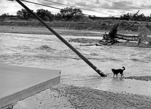 After flood, Santa Ana River, Redlands, 1995