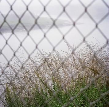 Fog Fence, Goleta Slough