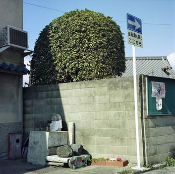 Skateboard Shrine