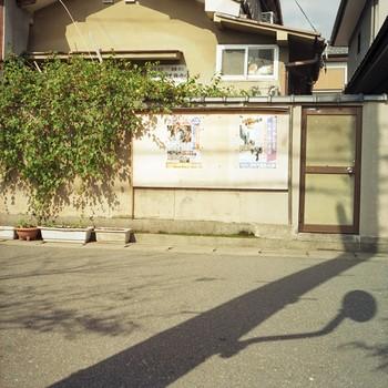 Neko Window