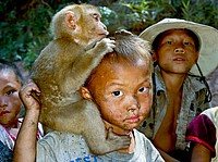 hmong boy with monkey