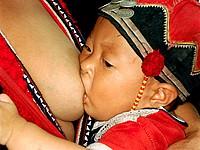 red tai  mother nursing