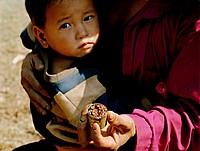 opium in shell casing