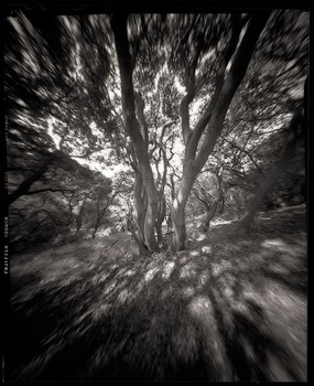 El Cerrito Hills; Zero Image 4x5 pinhole camera