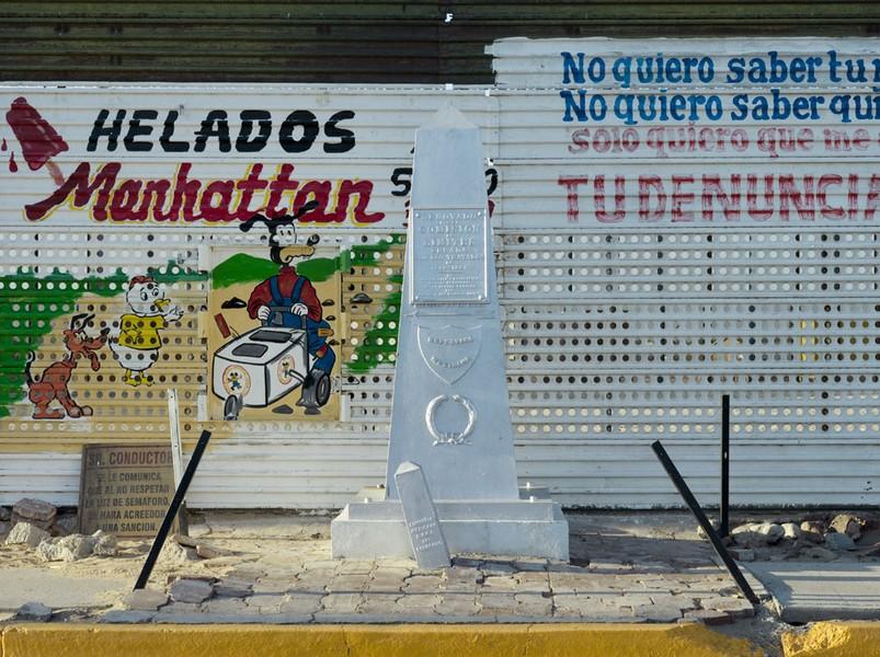 Border Monument No. 204