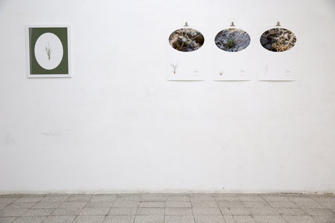 installation view/Belgrade