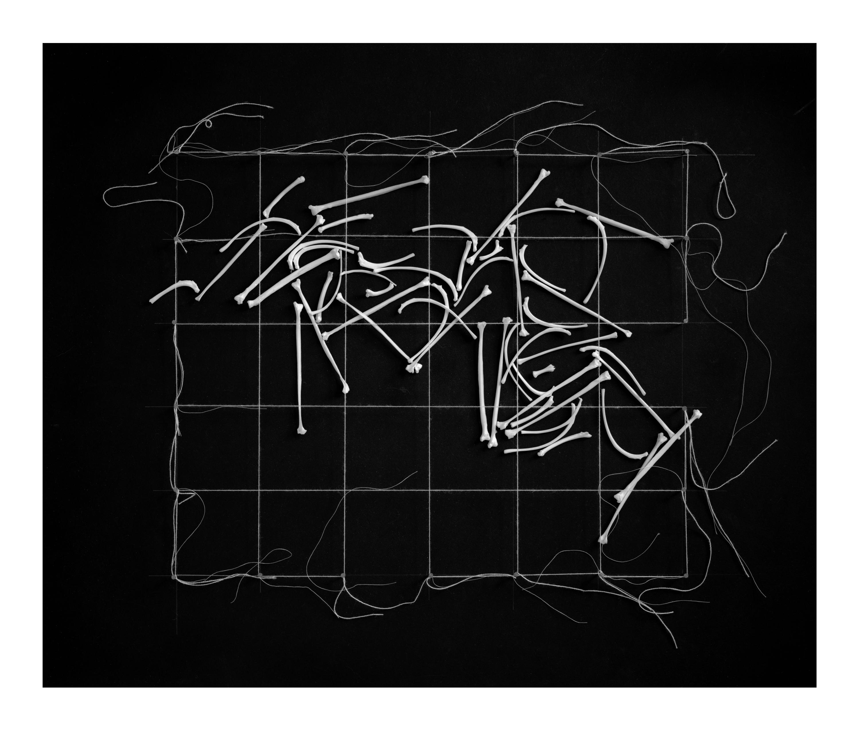 Dianne Kornberg, Grid 9