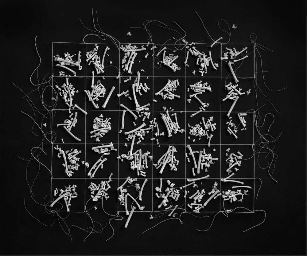 Dianne Kornberg, Grid 1